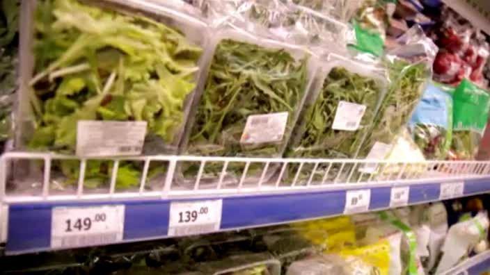 Выбор салатной зелени