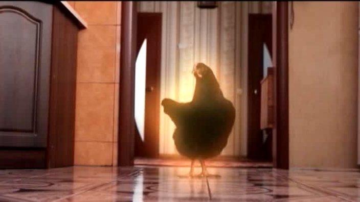340 выпуск. Черная курица